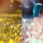 Blend màu bằng Channel By Hikaru Shin