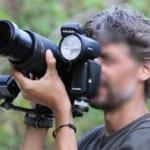 Hướng dẫn viên từ chối dẫn khách lên Sơn Trà chụp voọc vì dùng đèn flash