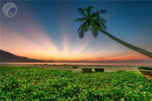 Khuyến khích: Một ngày mới nắng lên - Đào Thanh Quảng