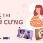 Cuộc thi ảnh, video dành cho các cô cậu thú cưng Cutest Pet